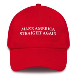 Make America Straight Again Hat